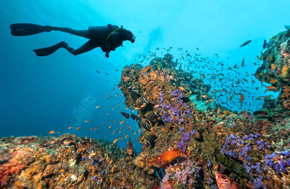El submarinismo, una actividad muy turística